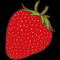 いちごのイラスト果物のイラスト無料イラスト素材 無料